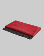 THROW BLANKET WITH FRINGE DETAIL