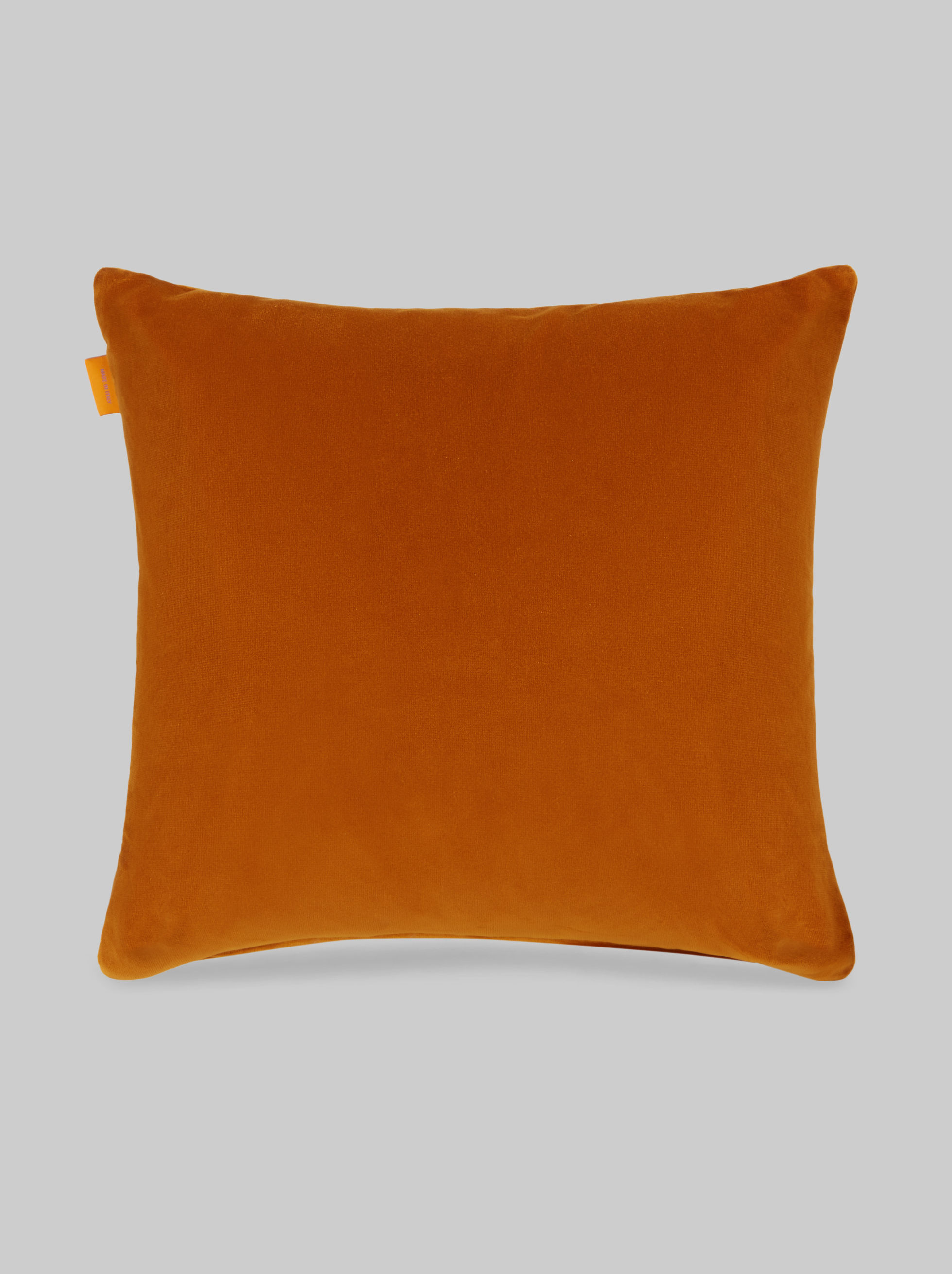 VELVET CUSHION WITH EMBROIDERED PEGASO