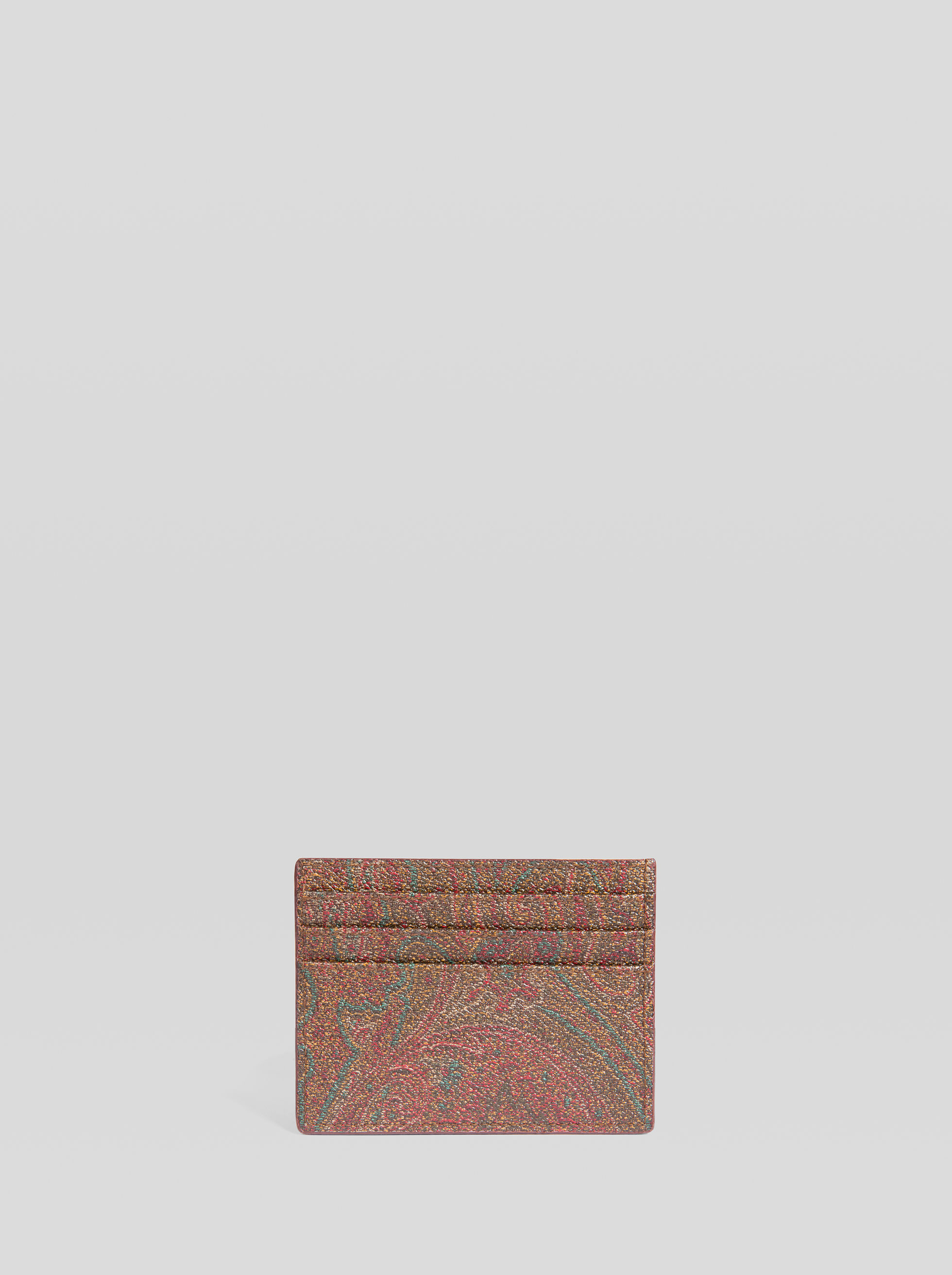 PAISLEY CREDIT CARD HOLDER