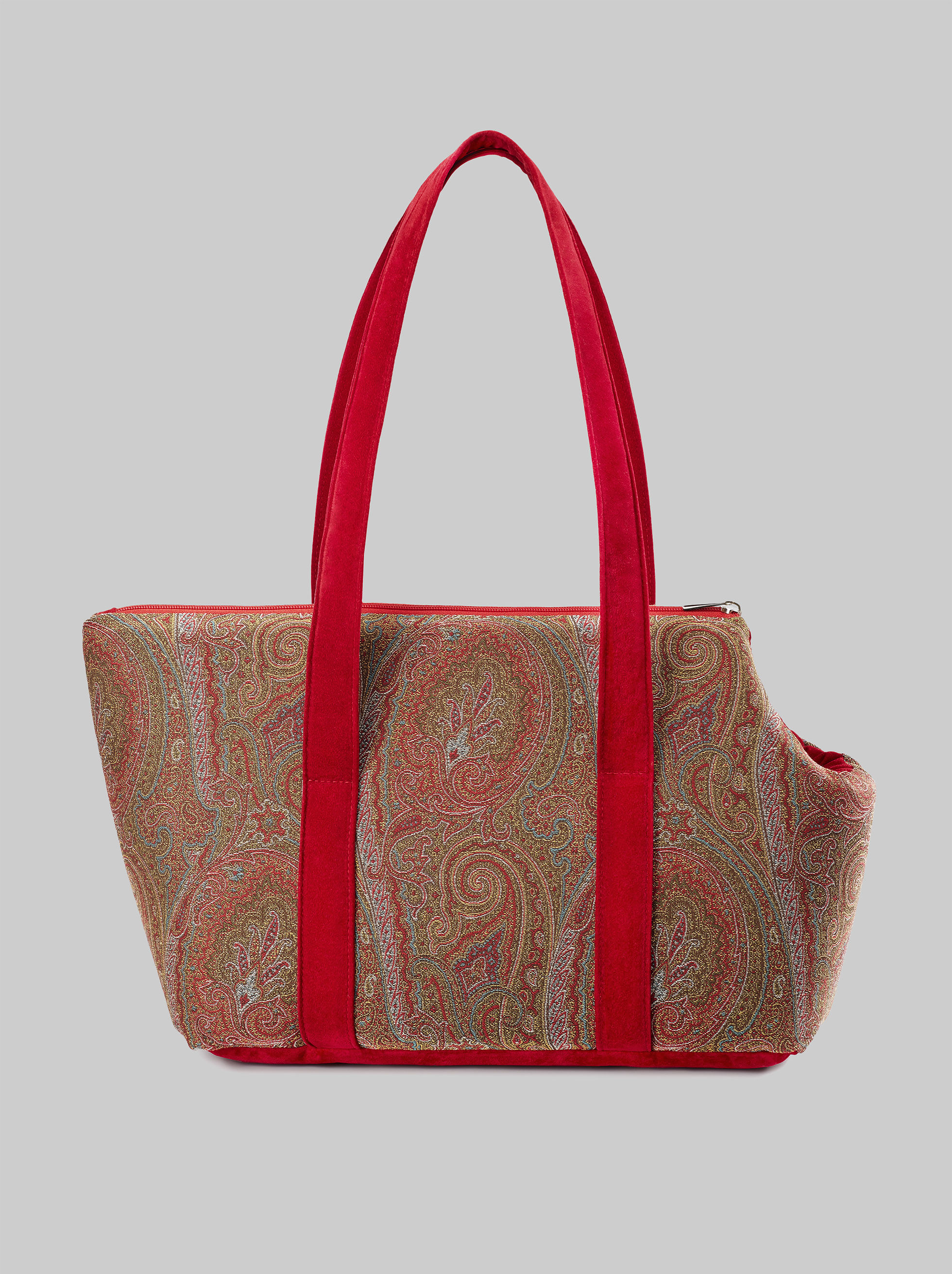 PAISLEY PET CARRIER