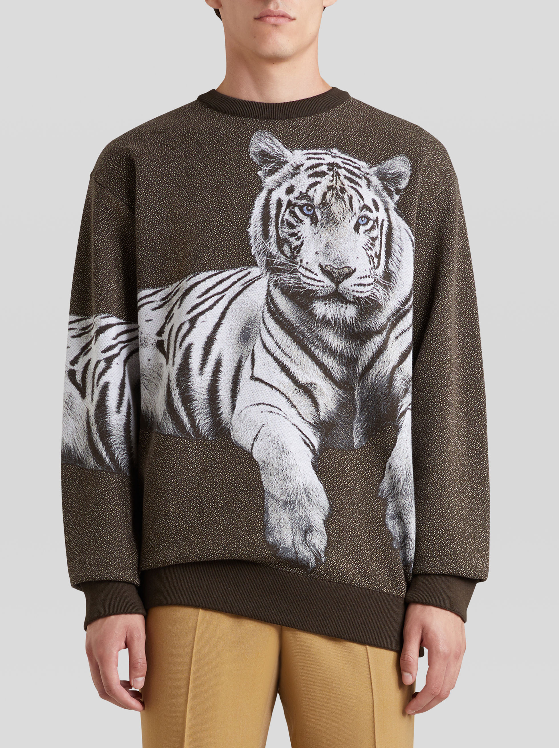 JACQUARD JUMPER WITH TIGER PRINT