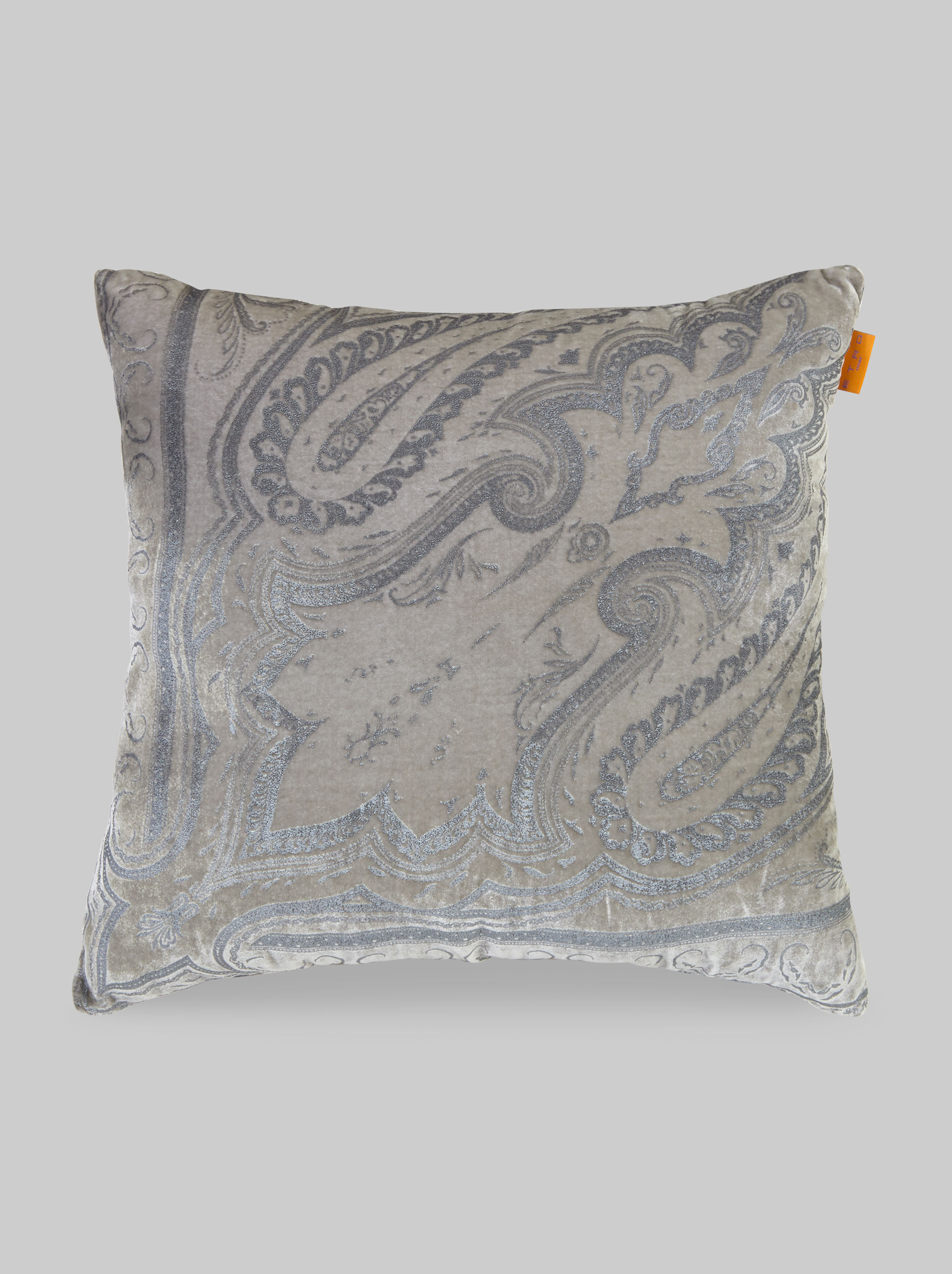 VELVET PAISLEY-PRINT THROW PILLOW