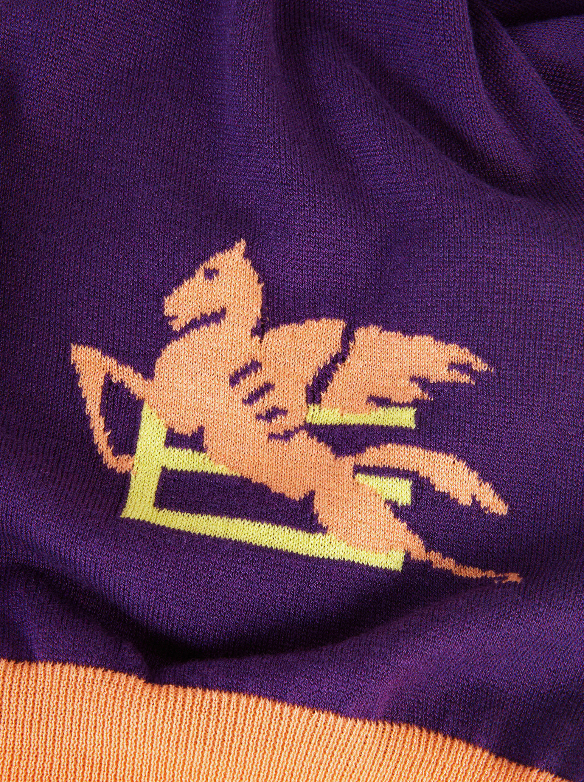 JUMPER WITH PEGASO LOGO