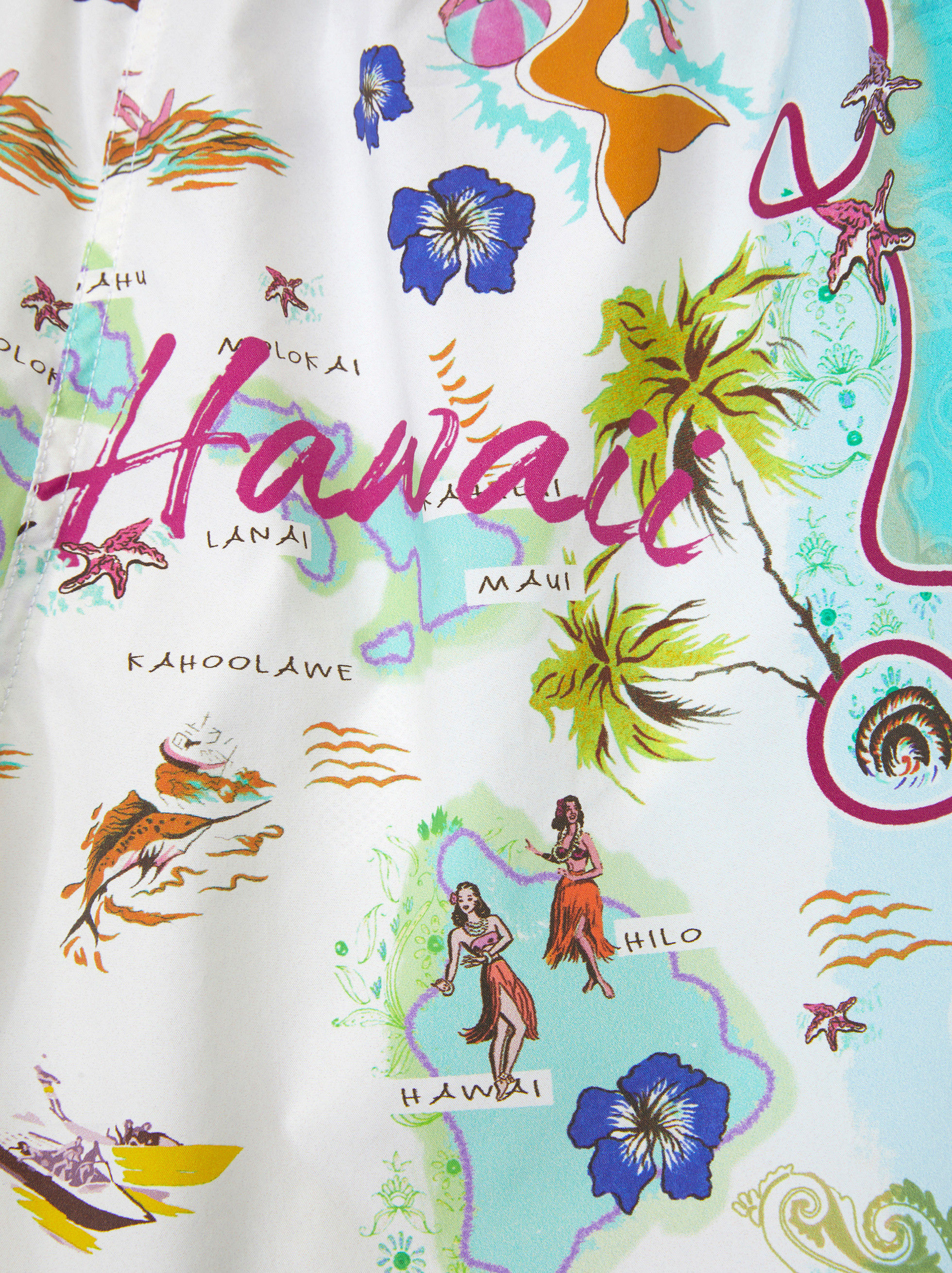 HAWAII PRINT SWIM SHORTS