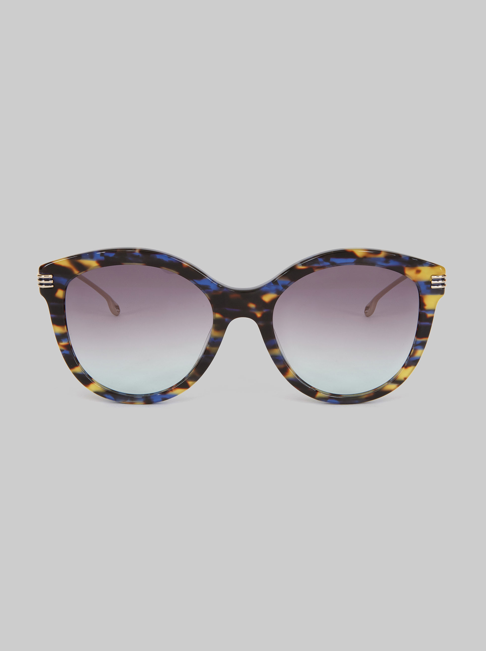 SUNGLASSES WITH CONTRASTING FRAME
